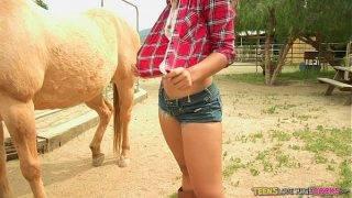 A farmer lánya vágyik a dákóra